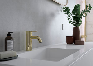 Silhouet Basin Mixer - Small (Polished Brass PVD)